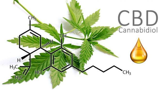 Лечение Канабиолом)
